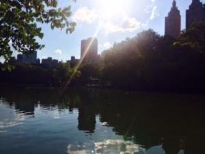 Central park - So pretty.
